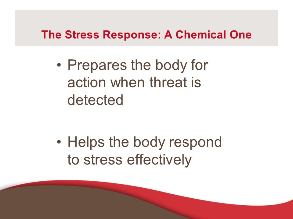 The Stress Response: A Chemical One