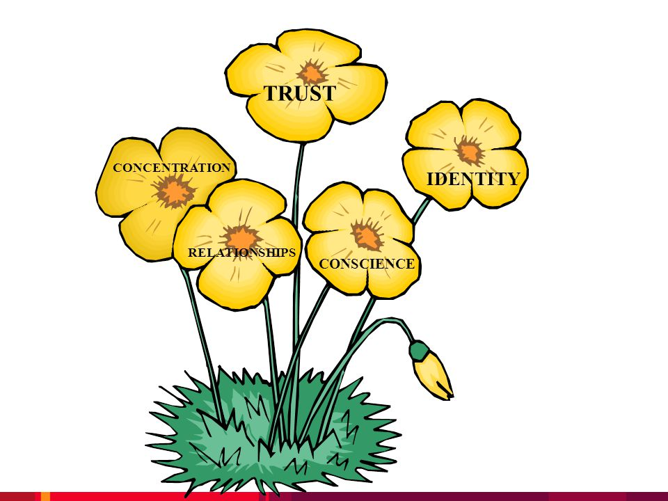 TRUST IDENTITY CONSCIENCE CONCENTRATION RELATIONSHIPS