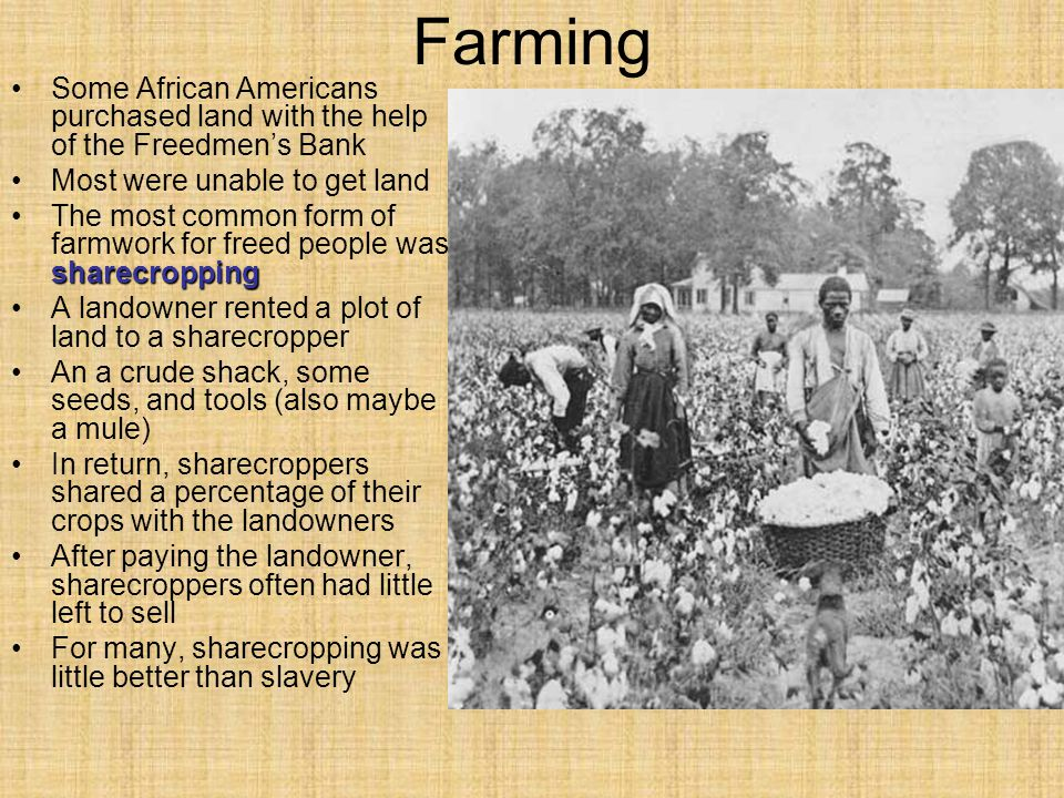 Farming Some African Americans purchased land with the help of the Freedmen's Bank. Most were unable to get land.