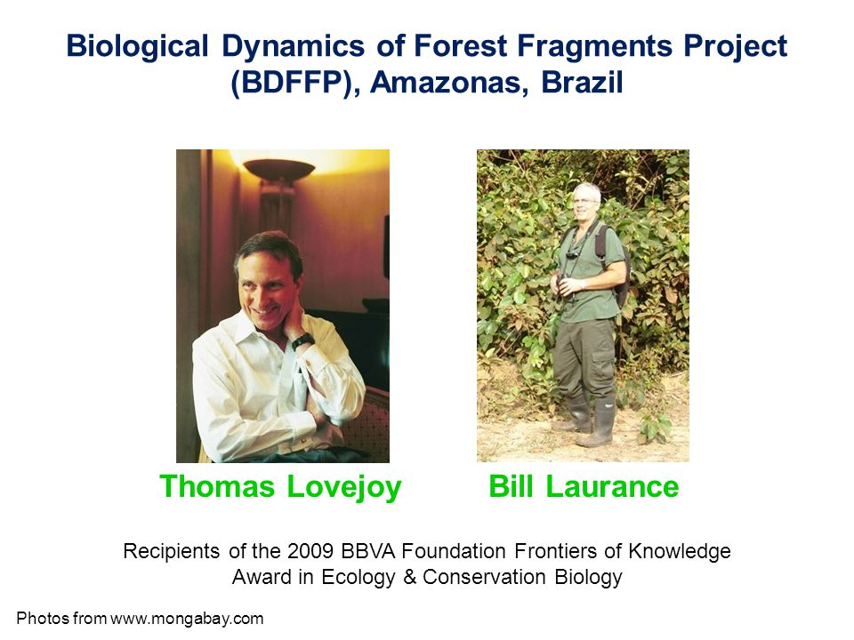 Biological Dynamics of Forest Fragments Project (BDFFP), Amazonas, Brazil