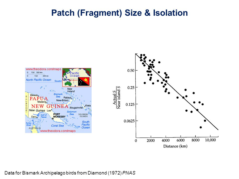 Patch (Fragment) Size & Isolation