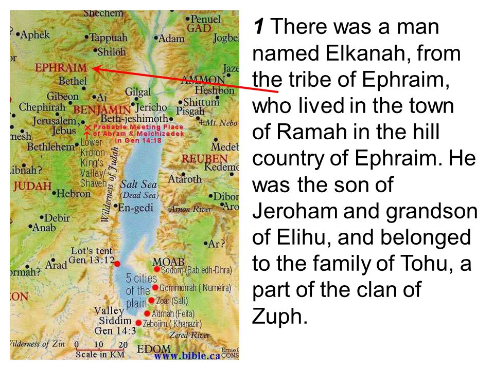 1 There was a man named Elkanah, from the tribe of Ephraim, who lived in the town of Ramah in the hill country of Ephraim.