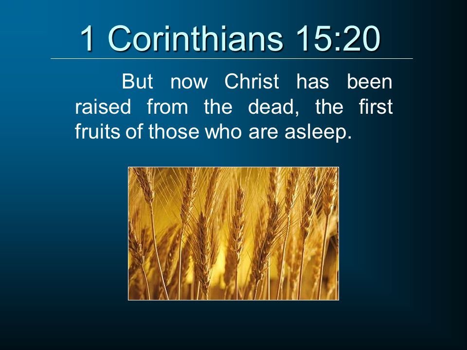 1 Corinthians 15:20 But now Christ has been raised from the dead, the first fruits of those who are asleep.
