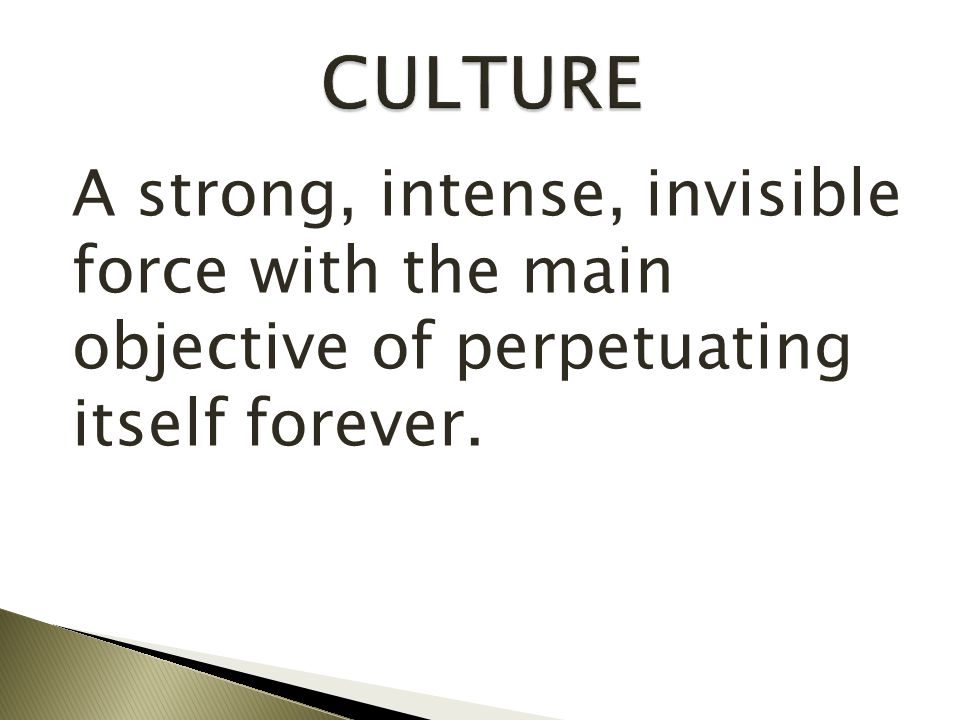 CULTURE A strong, intense, invisible force with the main objective of perpetuating itself forever.
