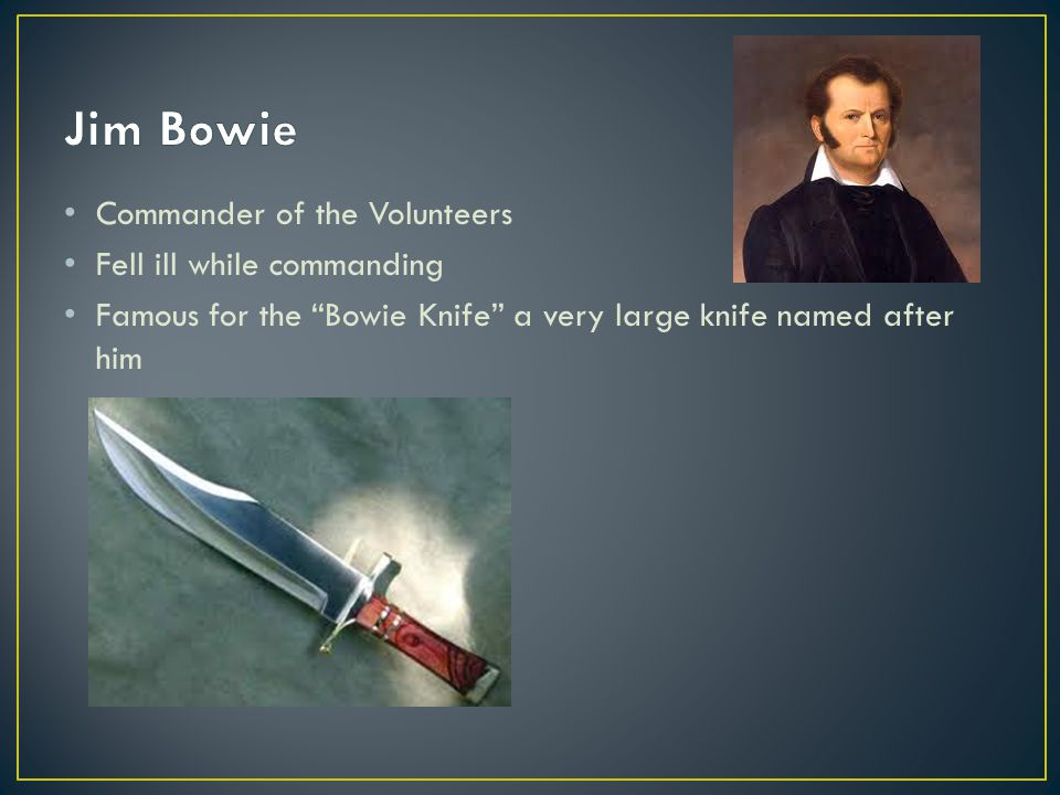 Jim Bowie Commander of the Volunteers Fell ill while commanding