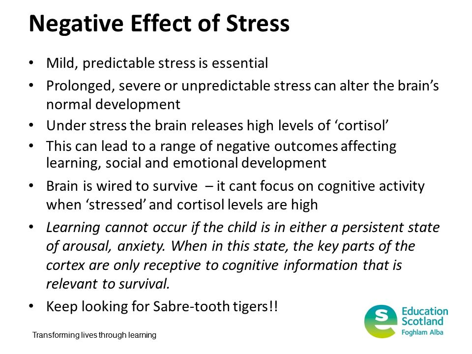 Negative Effect of Stress