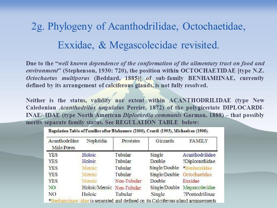 2g. Phylogeny of Acanthodrilidae, Octochaetidae, Exxidae, & Megascolecidae revisited.
