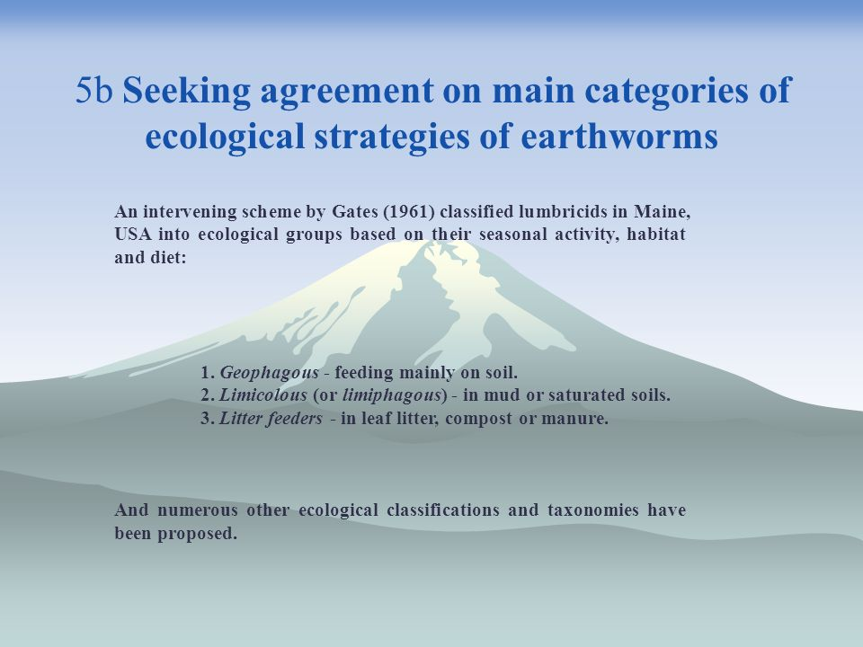 5b Seeking agreement on main categories of ecological strategies of earthworms