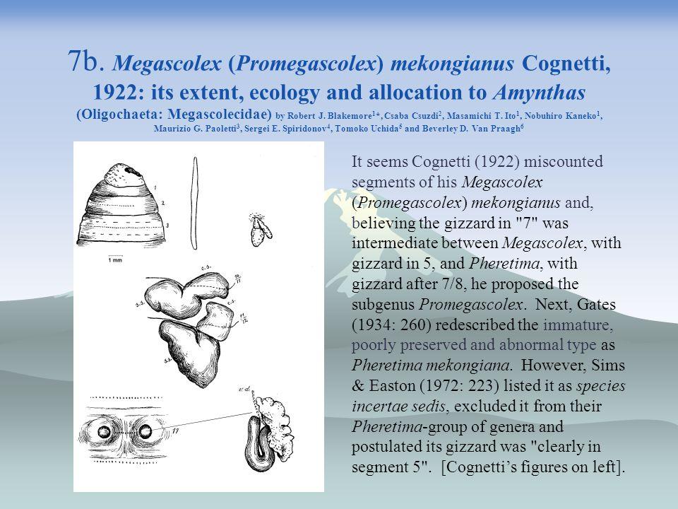 7b. Megascolex (Promegascolex) mekongianus Cognetti, 1922: its extent, ecology and allocation to Amynthas (Oligochaeta: Megascolecidae) by Robert J. Blakemore1*, Csaba Csuzdi2, Masamichi T. Ito1, Nobuhiro Kaneko1, Maurizio G. Paoletti3, Sergei E. Spiridonov4, Tomoko Uchida5 and Beverley D. Van Praagh6