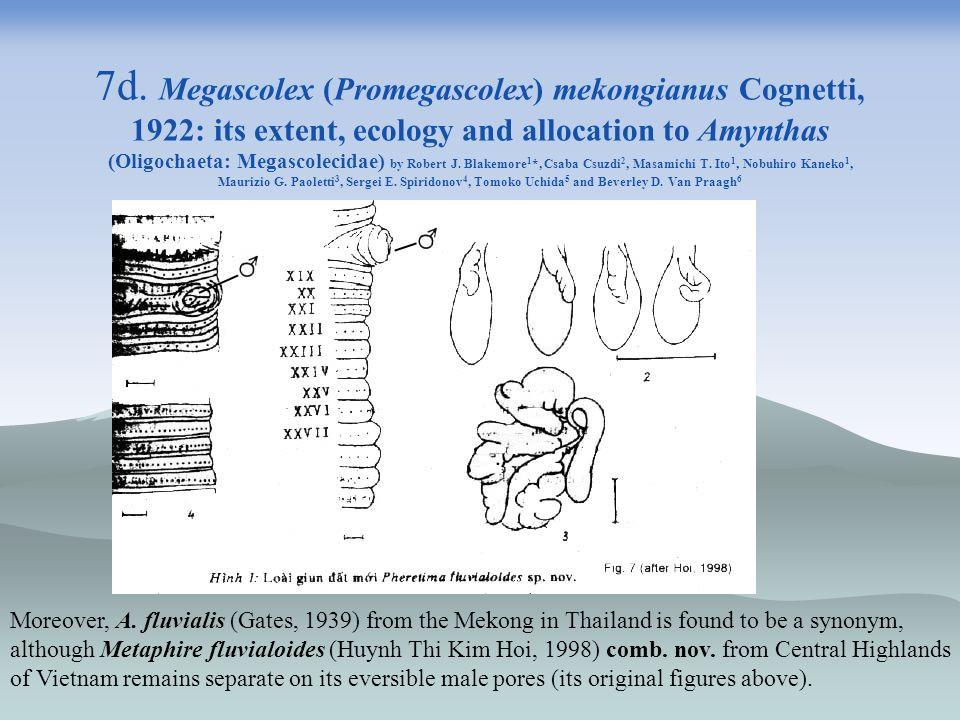 7d. Megascolex (Promegascolex) mekongianus Cognetti, 1922: its extent, ecology and allocation to Amynthas (Oligochaeta: Megascolecidae) by Robert J. Blakemore1*, Csaba Csuzdi2, Masamichi T. Ito1, Nobuhiro Kaneko1, Maurizio G. Paoletti3, Sergei E. Spiridonov4, Tomoko Uchida5 and Beverley D. Van Praagh6