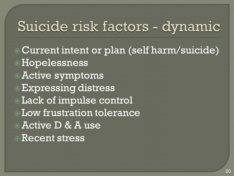 Suicide risk factors - dynamic
