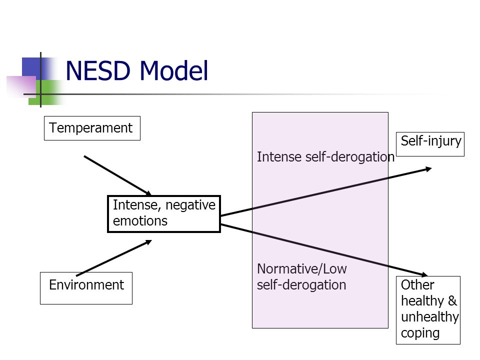 NESD Model Temperament Self-injury Intense self-derogation