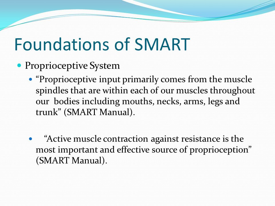 Foundations of SMART Proprioceptive System