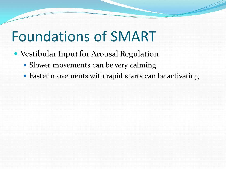 Foundations of SMART Vestibular Input for Arousal Regulation