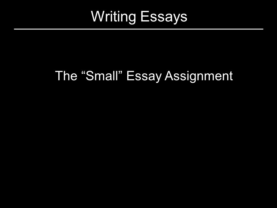 The Small Essay Assignment