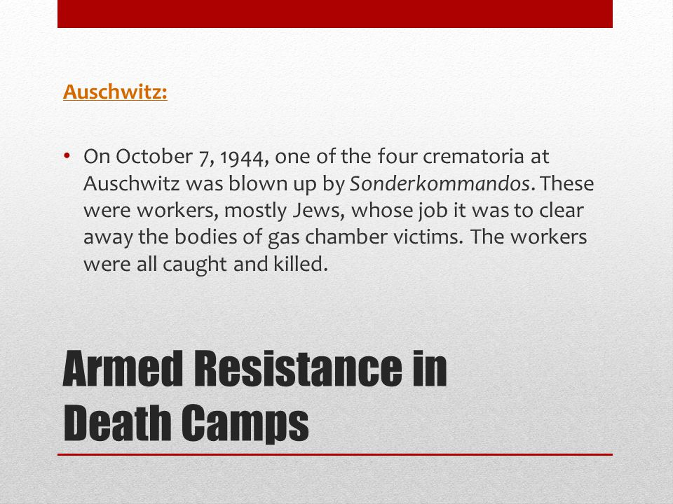 Armed Resistance in Death Camps