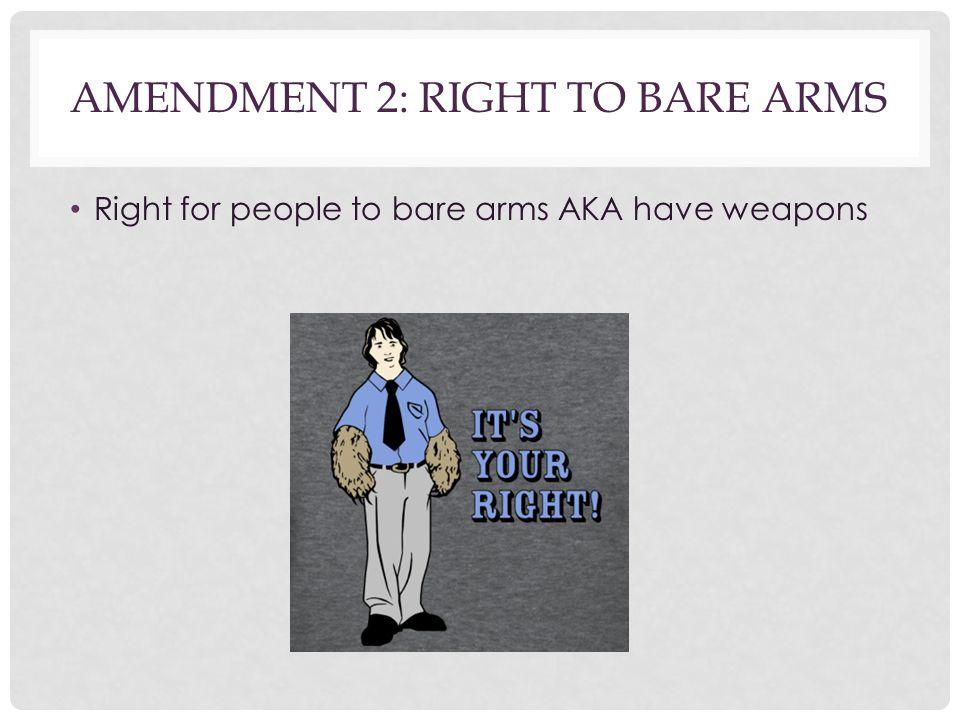 Amendment 2: Right to Bare arms