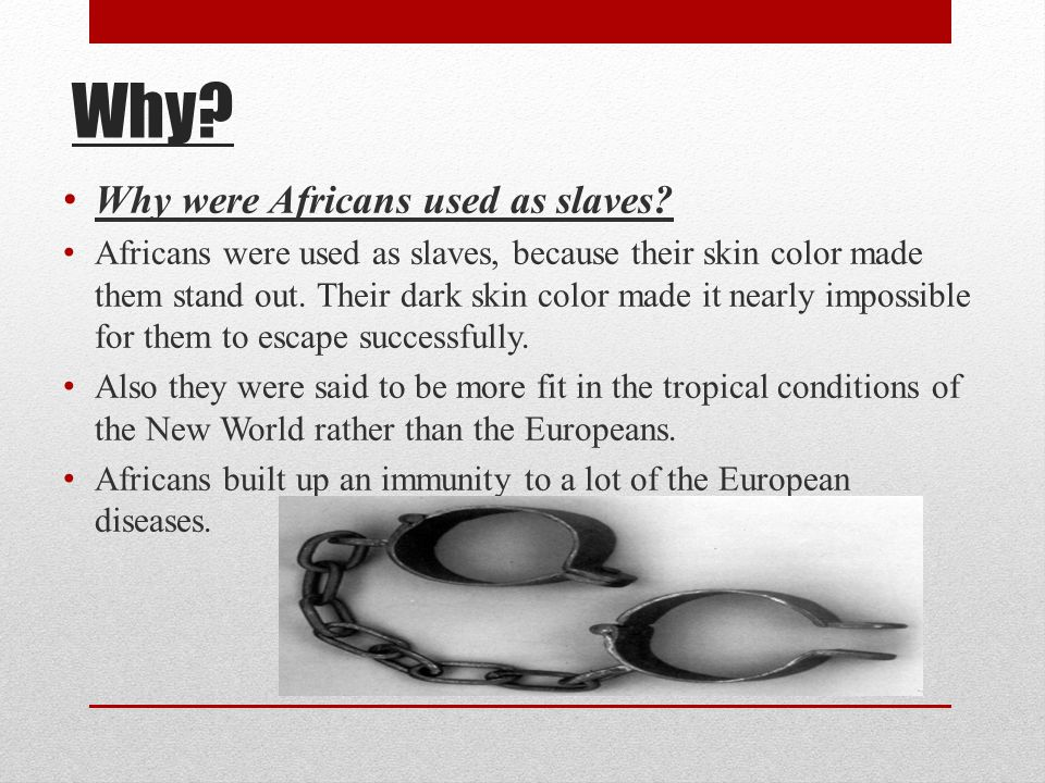 Why Why were Africans used as slaves