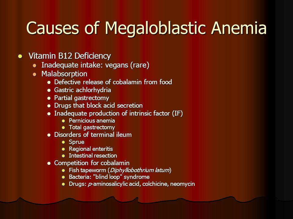 Causes of Megaloblastic Anemia