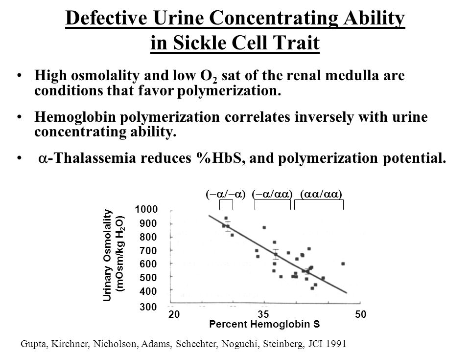 Defective Urine Concentrating Ability in Sickle Cell Trait