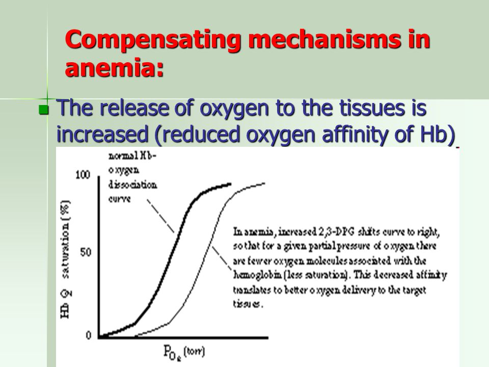 Compensating mechanisms in anemia: