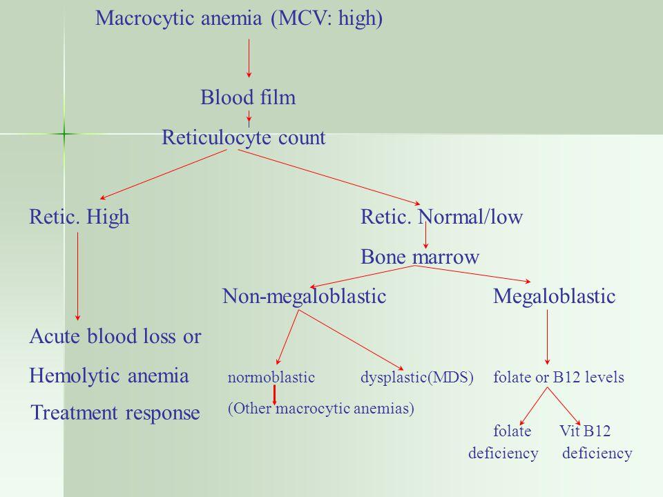 Macrocytic anemia (MCV: high)
