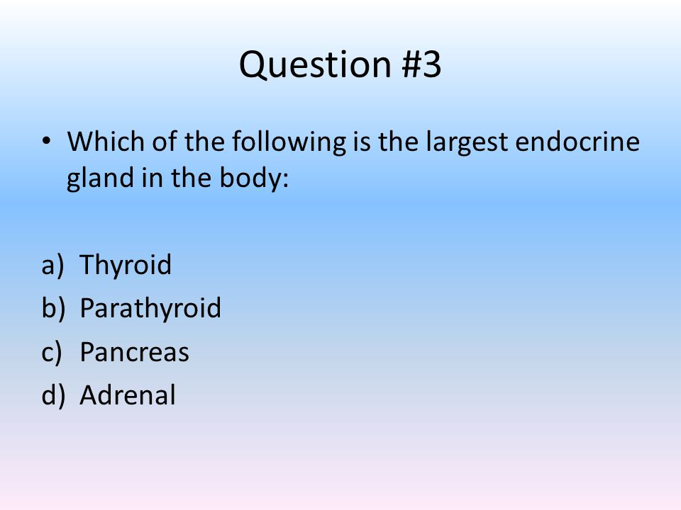 Question #3 Which of the following is the largest endocrine gland in the body: Thyroid. Parathyroid.