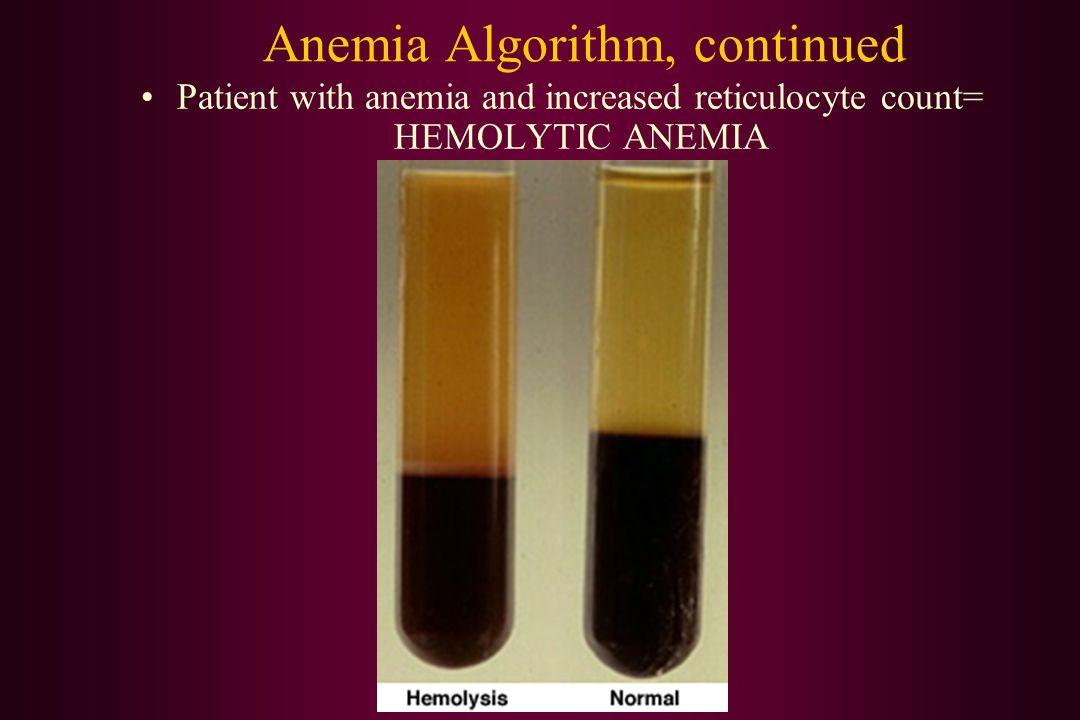 Anemia Algorithm, continued