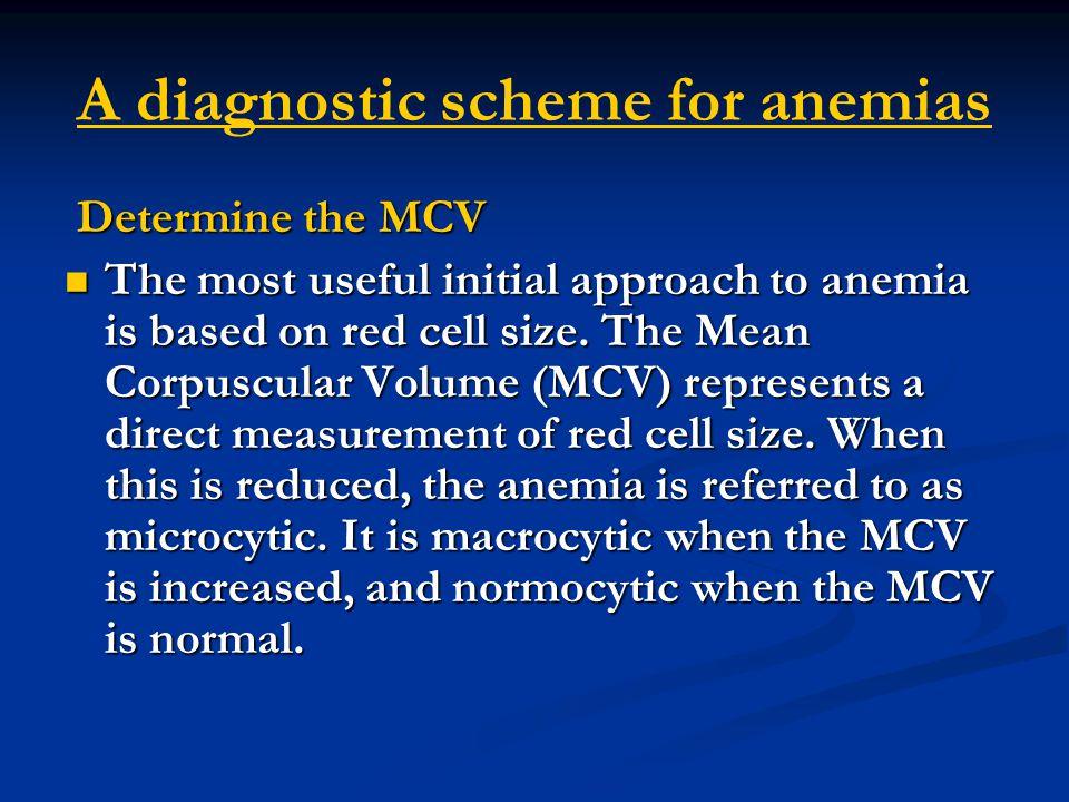 A diagnostic scheme for anemias