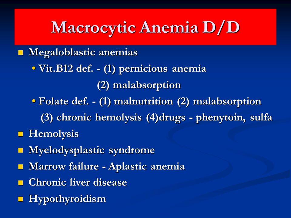 Macrocytic Anemia D/D Megaloblastic anemias