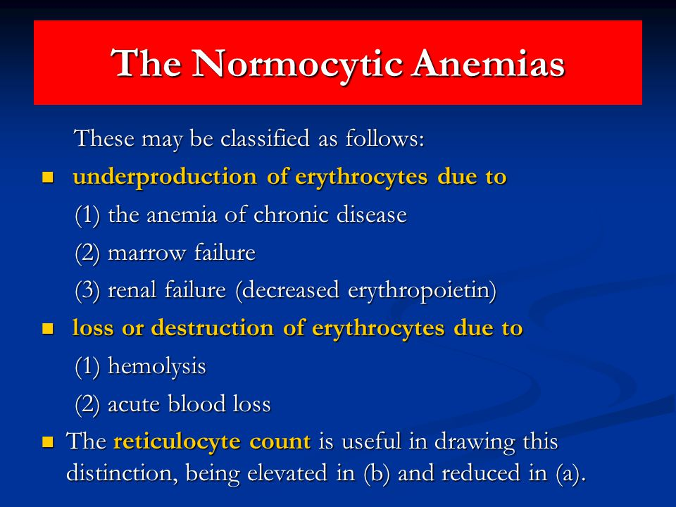 The Normocytic Anemias