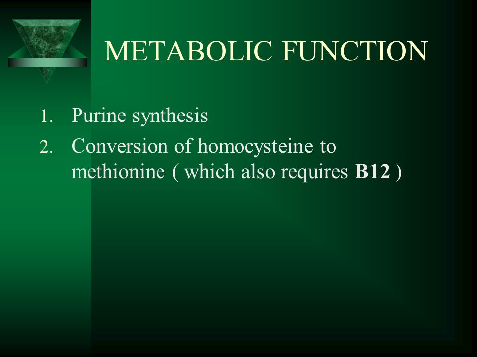 METABOLIC FUNCTION Purine synthesis
