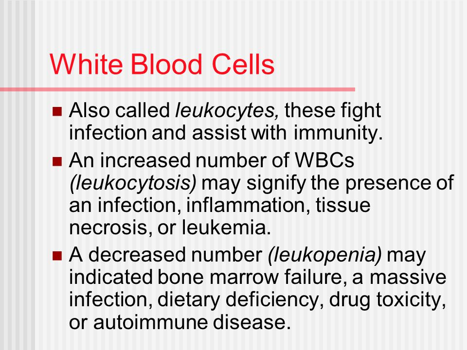 White Blood Cells Also called leukocytes, these fight infection and assist with immunity.