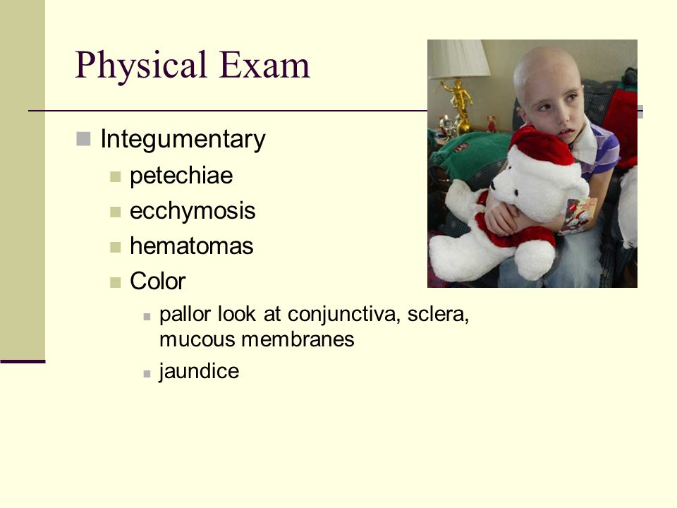 Physical Exam Integumentary petechiae ecchymosis hematomas Color