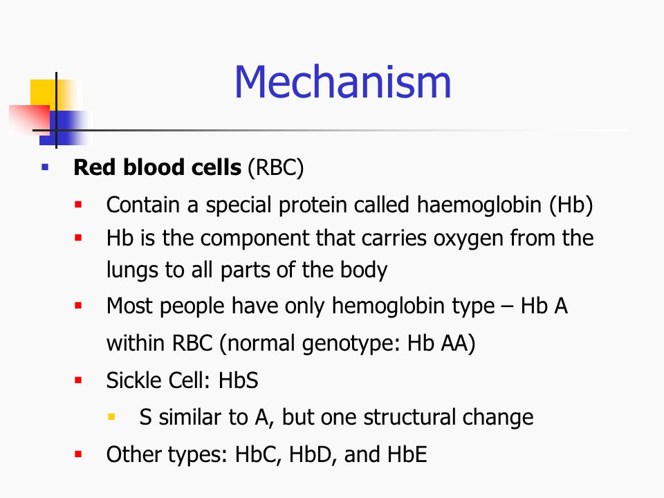 Mechanism Red blood cells (RBC)