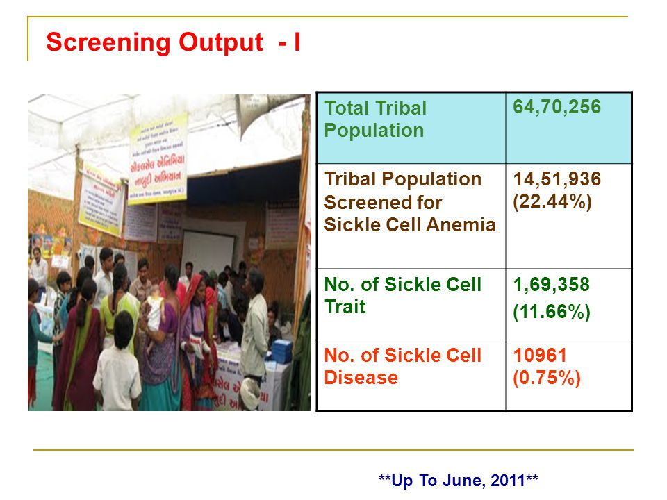 Screening Output - I Total Tribal Population 64,70,256