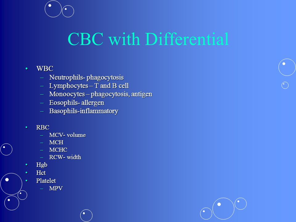 CBC with Differential WBC Neutrophils- phagocytosis