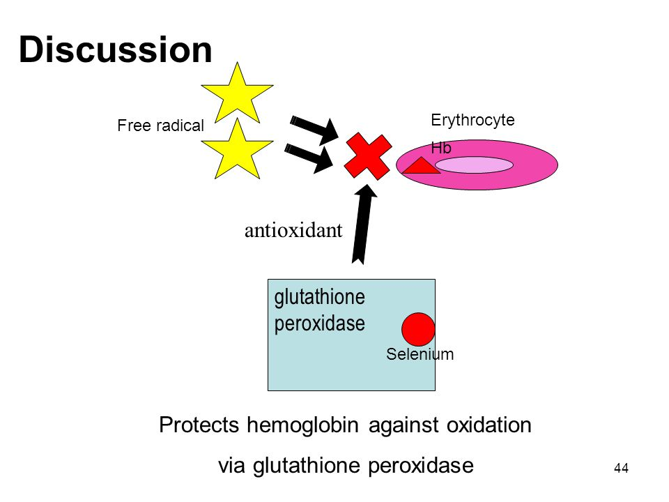 Discussion antioxidant glutathione peroxidase