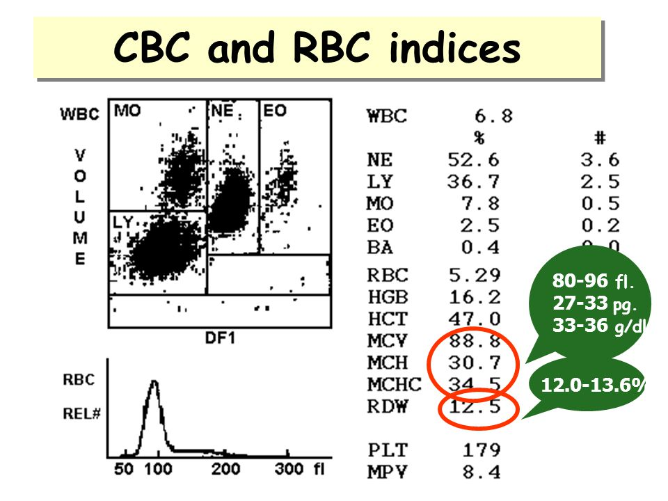 CBC and RBC indices 80-96 fl. 27-33 pg. 33-36 g/dl 12.0-13.6%