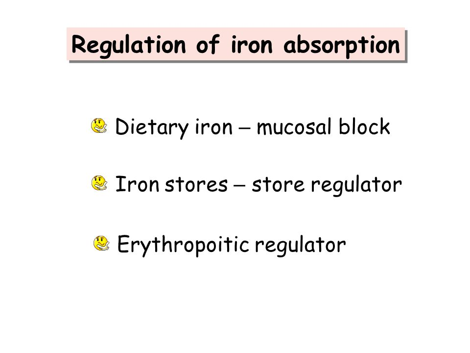 Regulation of iron absorption
