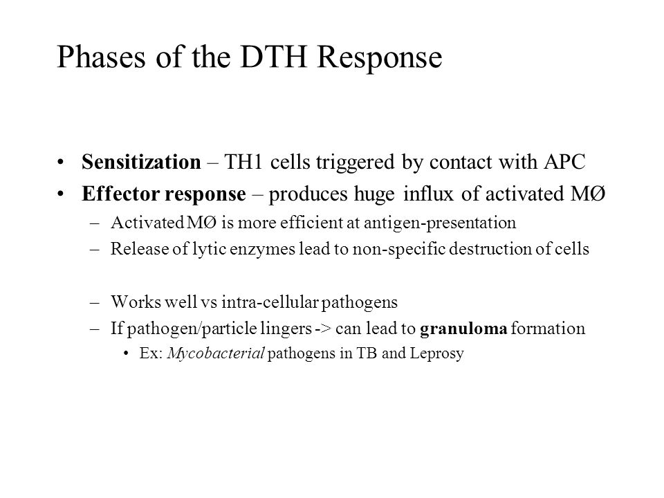 Phases of the DTH Response