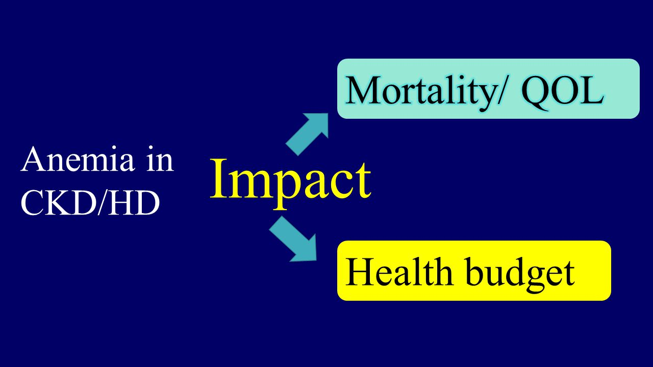 Mortality/ QOL Anemia in CKD/HD Impact Health budget