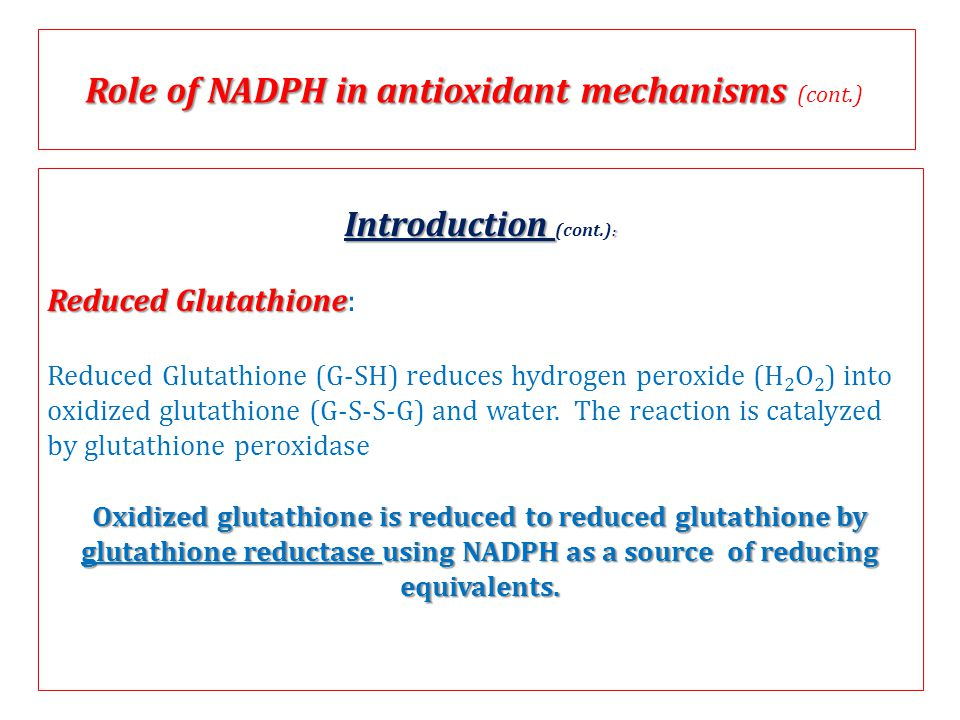 Role of NADPH in antioxidant mechanisms (cont.)