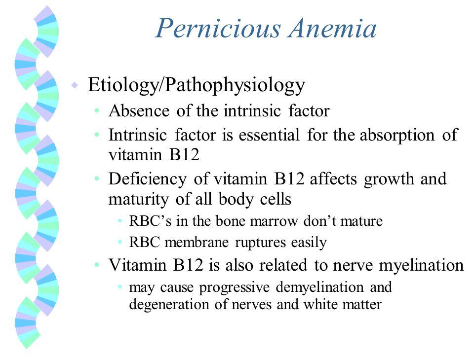 Pernicious Anemia Etiology/Pathophysiology