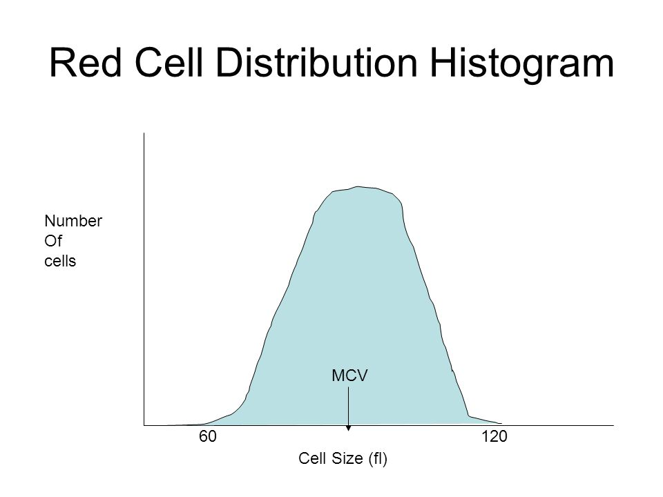 Red Cell Distribution Histogram