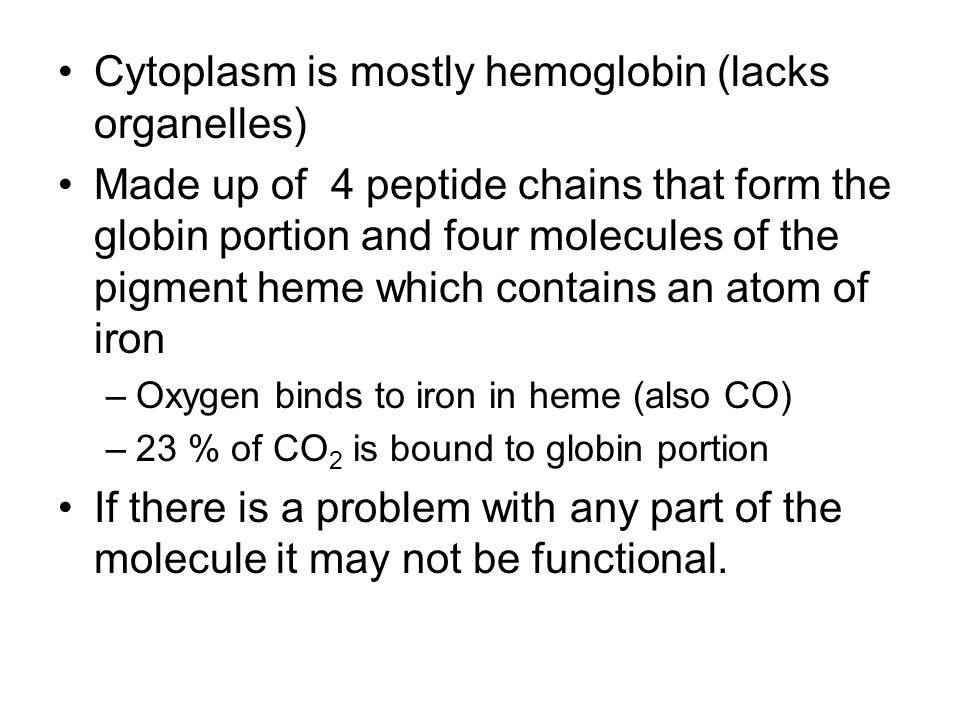 Cytoplasm is mostly hemoglobin (lacks organelles)