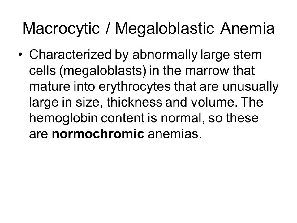 Macrocytic / Megaloblastic Anemia