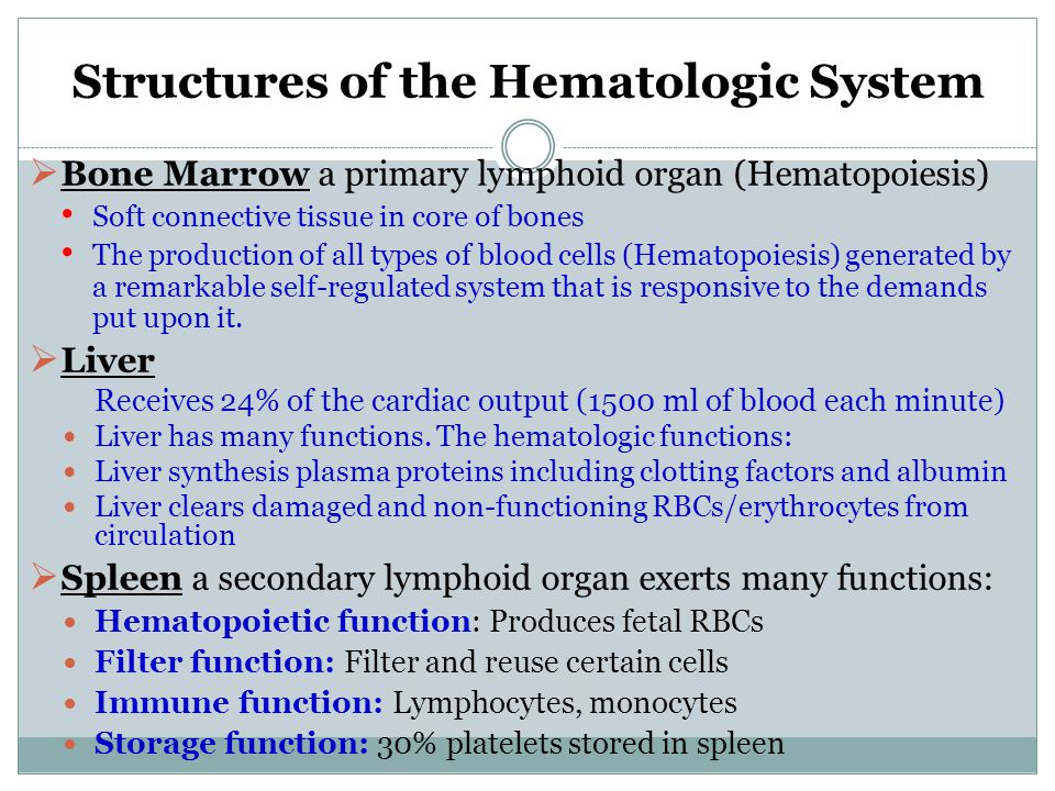 Structures of the Hematologic System