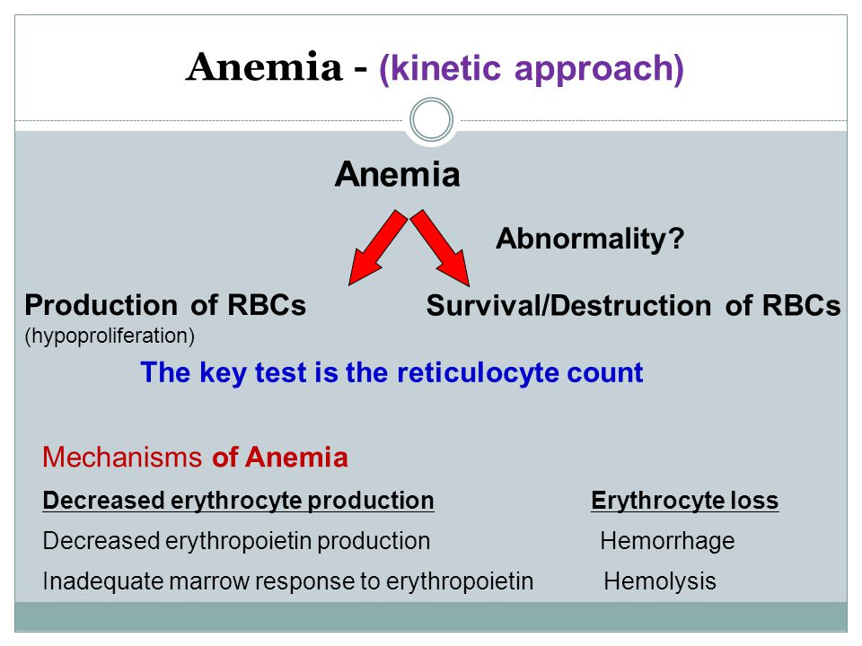 Anemia - (kinetic approach)