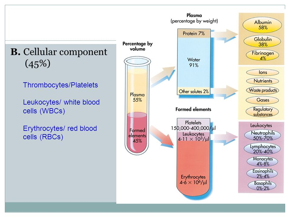 B. Cellular component (45%)